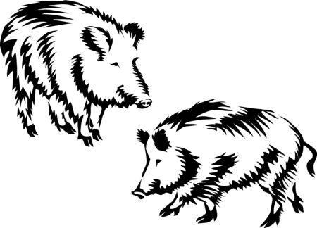2 Wild boar2