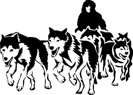 Musher with sled dogs Stock Illustratie