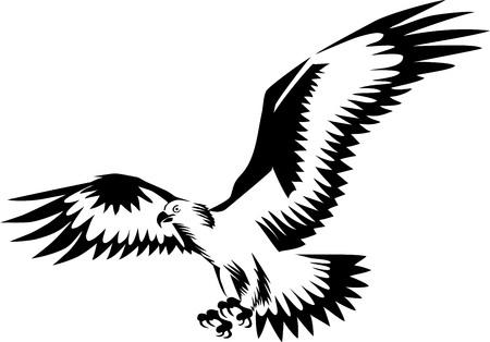 Eagle flying - stylized vector illustration