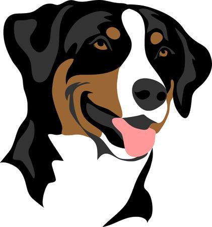 Apenzeller Sennenhund - stylized portrait