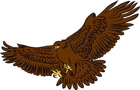 Golden Eagle Attacking - Vector Illustration