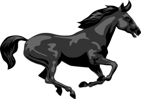 Black horse galloping - vector