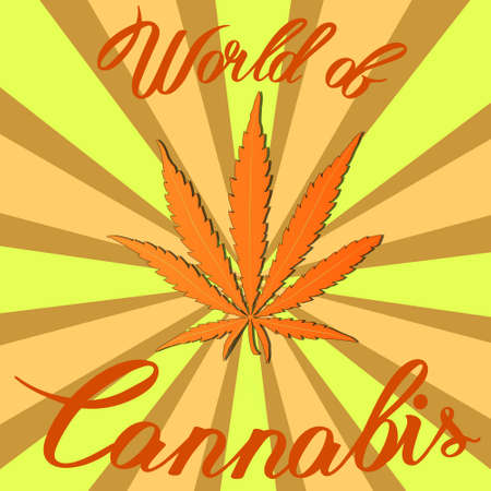 Marijuana hemp Cannabis sativa or Cannabis indica leaf on background