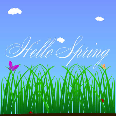 Illustration on the theme hello spring. Focus on a piece of green grass in which insects live their lives. Vector illustration