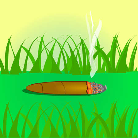 Vector drawn cigar on the street. Vector illustration. A day without tobacco. Vettoriali
