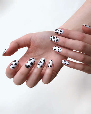 Closeup top view of two beautiful female hands with perfect female manicure in white with black spots