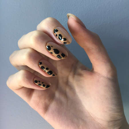 French manicure on women's thick handles with leopard design. Spotted black design on French gel varnishes