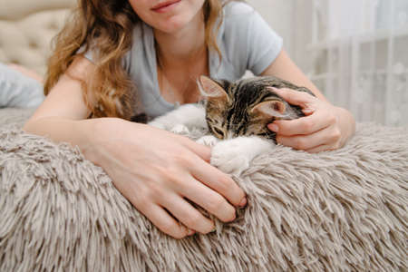 girl stroking a cat on the bed.Girl playing with a kitten.The girl's hands caress and caress the cat.People and domestic animals.