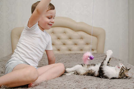 Child playing with cat at home. Kids and pets. Little boy plays with a cat in bed.Children play and feed kitten. Home animals.