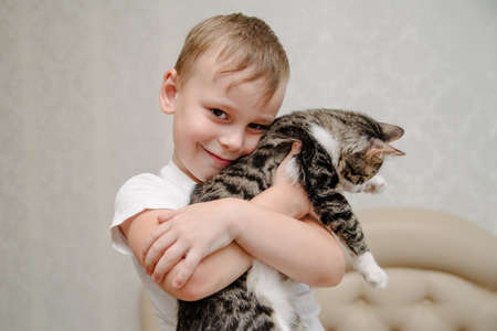 little boy hugs a cat.Happy little boy with a smile holds in his hands a cat.Kids play with pets. Children and domestic animals.