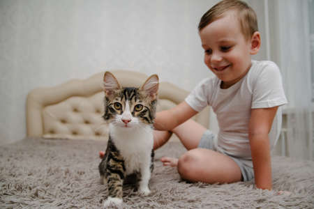 Little boy stroking a cat in bed.Portrait of Caucasian preschooler boy sitting on bed in bedroom at home and stroking cat. Фото со стока