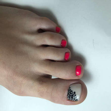Red pedicure. Red pedicure on female feet.Woman feet with red pedicure on gray background