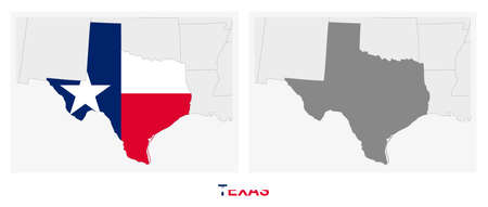 Two versions of the map of US State Texas, with the flag of Texas and highlighted in dark grey. Vector map.  イラスト・ベクター素材