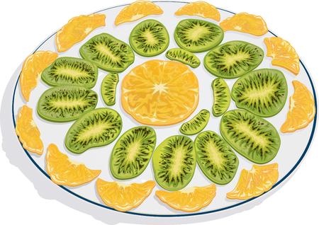Kiwi And Orange Slices Vector