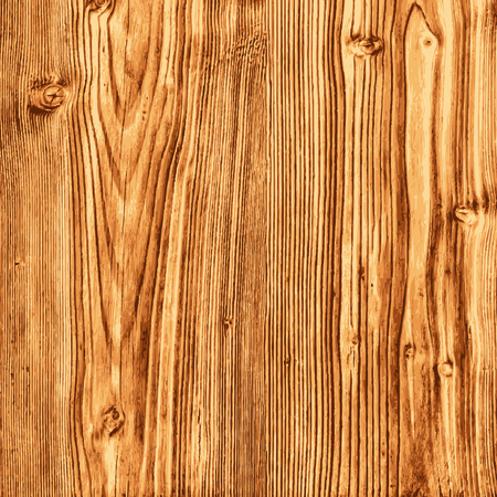 Pine Wood Texture - Illustration Vector