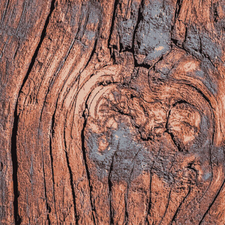 Old Weathered Cracked Knotted Wood Texture - Illustration Vector