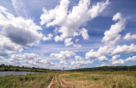 klyazma: Wide angle view of road with a single tree near a summer swamp under blue cloudy sky
