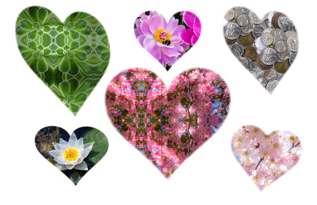 passion fruit flower: Heart silhouette set of flowers and plants for the Valentine Day
