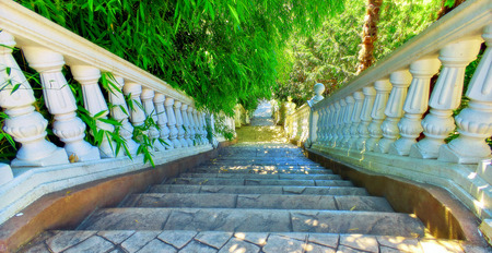 Wide angle vibrant view of white stone stairs in green park of Sochi in summer Stok Fotoğraf