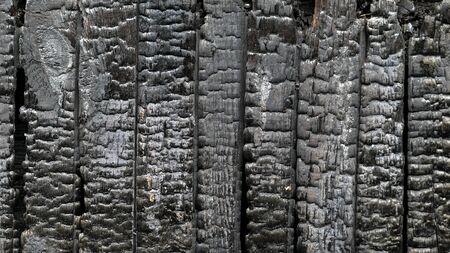 Close up view of pattern of burnt wooden house