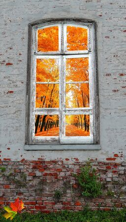 Concept of autumn season as view from retro window in the middle of abandoned brick wall