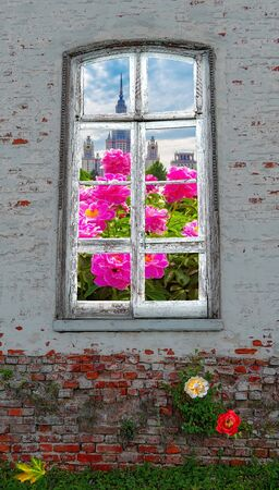 Nice spring view from retro window in the middle of abandoned brick wall with growing green plants