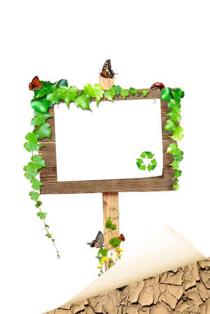 bulletinboard: Paper for text on sign board with green plants and butterflies