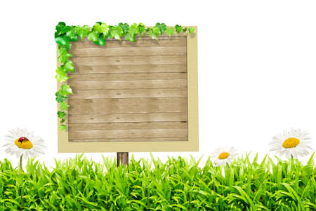 Ecology or advertisement concept with wooden board isolated on white background Stock Photo