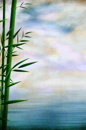 Grungy background with bamboo branches and beautiful sky photo