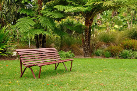 Wooden bench in Queen Victoria Gardens, Melbourne Australia photo