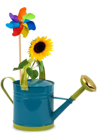 Yellow sunflower and toy windmill in a watering can photo