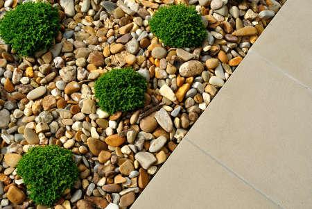 造園植物、小石や舗装の組み合わせ