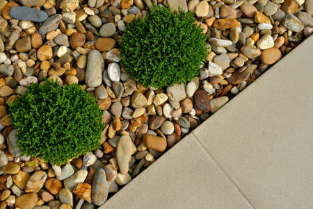 Landscaping combinations of plants, pebbles and paving Standard-Bild