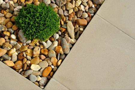 Landscaping combinaties van planten, keien en straatstenen Stockfoto