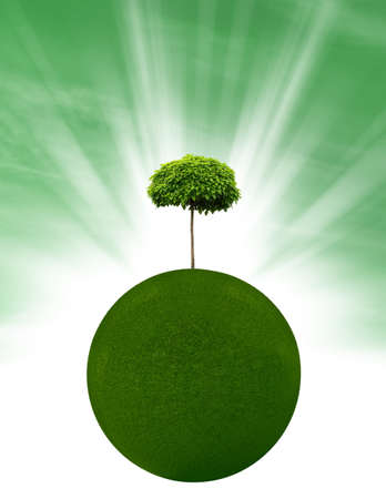 environmentally friendly: Environmentally friendly planet with tree and grass