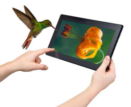 Interatividade Tablet nova tecnologia e conceito de alta performance Imagens