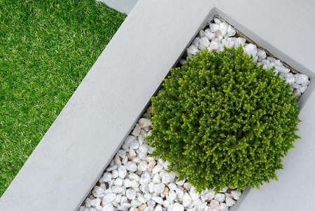 Landscaping combinations of plant and grass Stock Photo