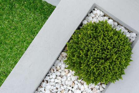 Paisagismo combina��es de plantas e grama