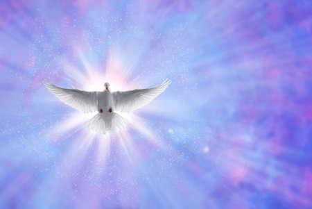 Witte duif in een blauwe paarse hemel, symbool van het geloof