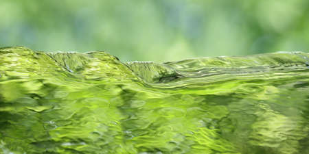 water texture: Green water over spring background panoramic view
