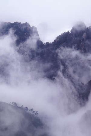 mist: Foggy mountains landscape vertical image