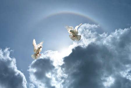 simbolo della pace: Colombe bianche contro le nuvole e il concetto arcobaleno per la libertà, la pace e la spiritualità Archivio Fotografico