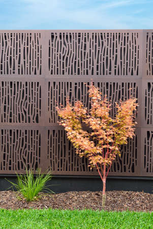 Combinations of plants, rustic wall, grass and mulch Banque d'images