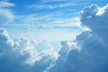 mourning: Flock of doves in flight against blue cloudy sky representing angels carrying the soul to Heaven