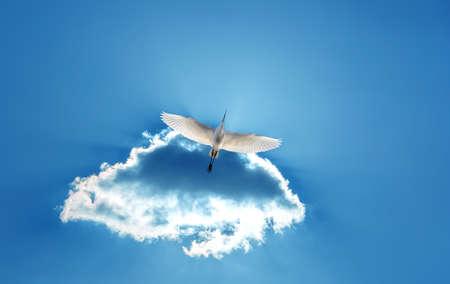 genera: Bird over shining sun Striving Upwards and Motivated concept