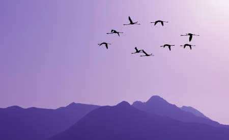 migratory birds: Lavender sky at sunset with of flocks of migratory birds silhouettes