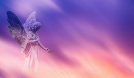 Bello angelo nel concetto del cielo rosa e blu della religione