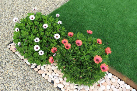 Combination of plants, artificial grass and white pebbles Banque d'images
