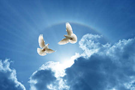 White Doves in the air over cloudy sky concept of religion and peace Stockfoto