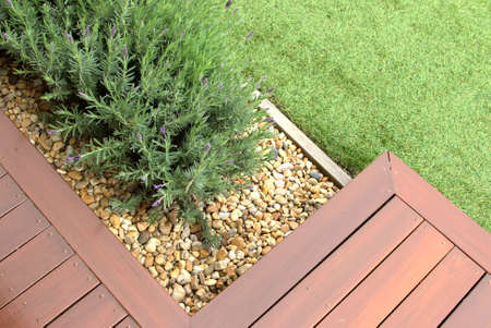Combinations of plants, decking, plants and pebble Banque d'images - 144110094